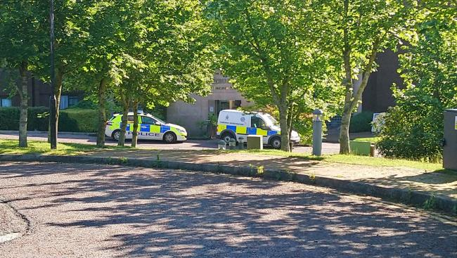 Police on the scene at the Daresbury Park Hotel the morning after the mass brawl.