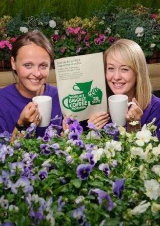 Lucy Prichard and Candice Dowden, garden centre team members, prepare for the World's Biggest Coffee Morning