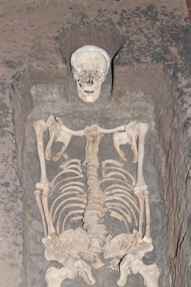 The skeleton of the 13th century knight