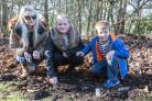 Families plant snowdrops at Norton Priory in memory of loved ones