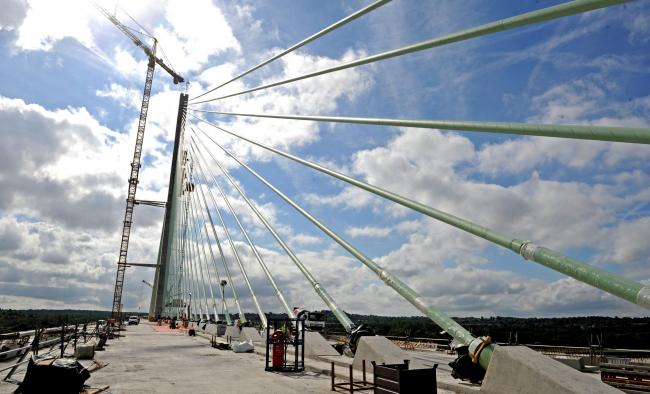 Team building the Mersey Gateway shortlisted for two prestigious national biodiversity awards