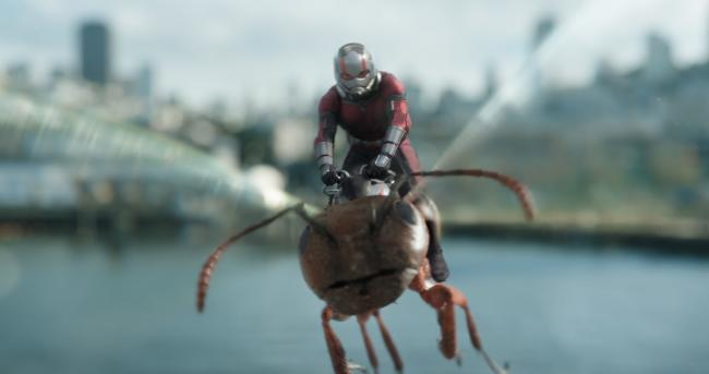 Paul Rudd as Scott Lang/Ant-Man