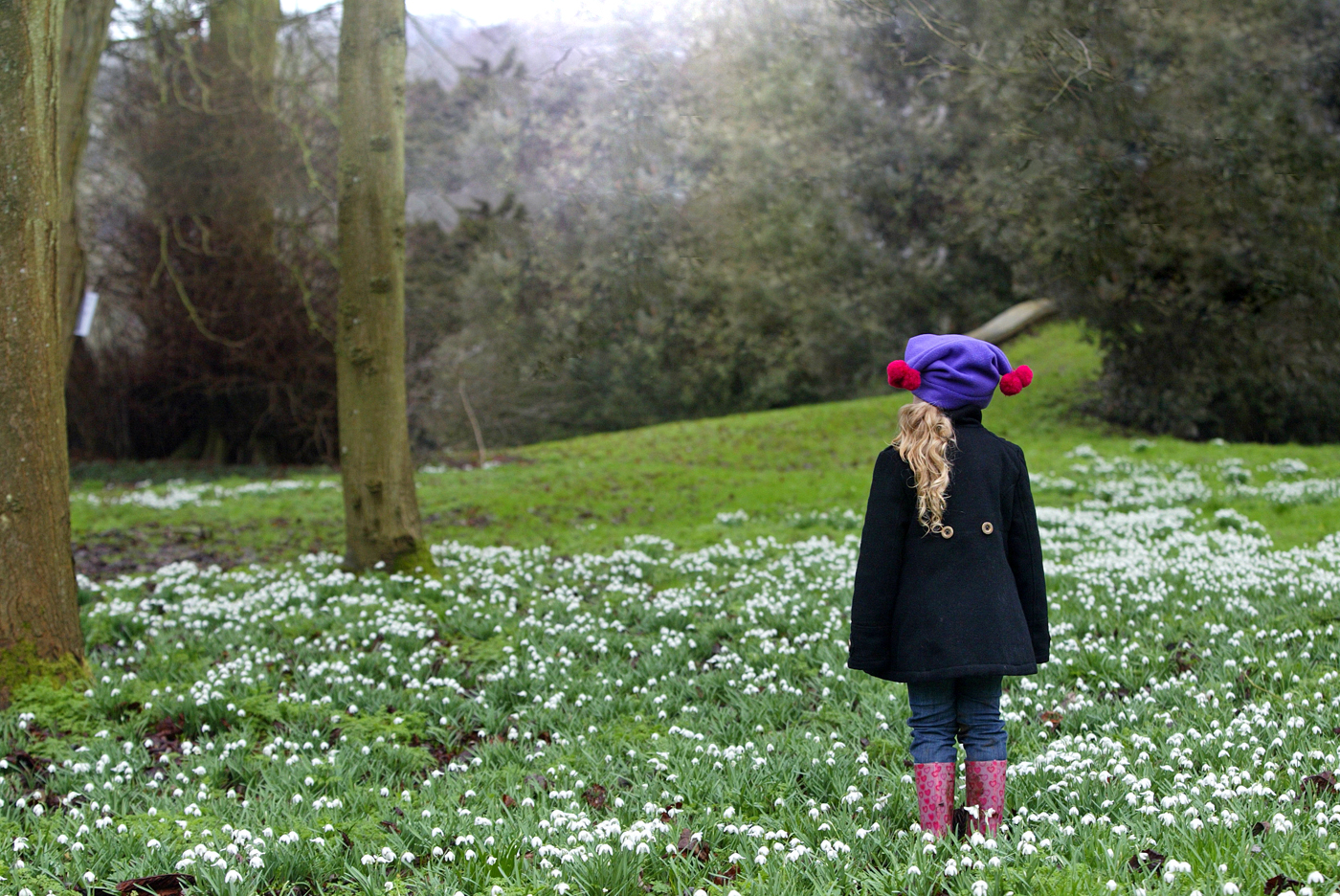Norton Priory will host Child Bereavement UK's Snowdrop Walk later this month.